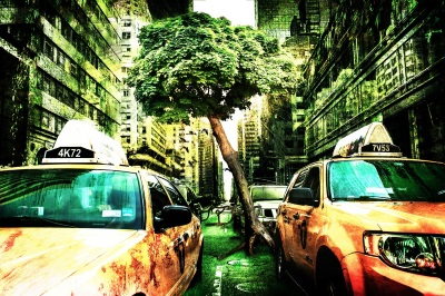 The Environmentalist: A Review
