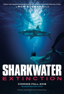 Exclusive – VIFF Embraces Rob Stewart – Sharkwater Extinction