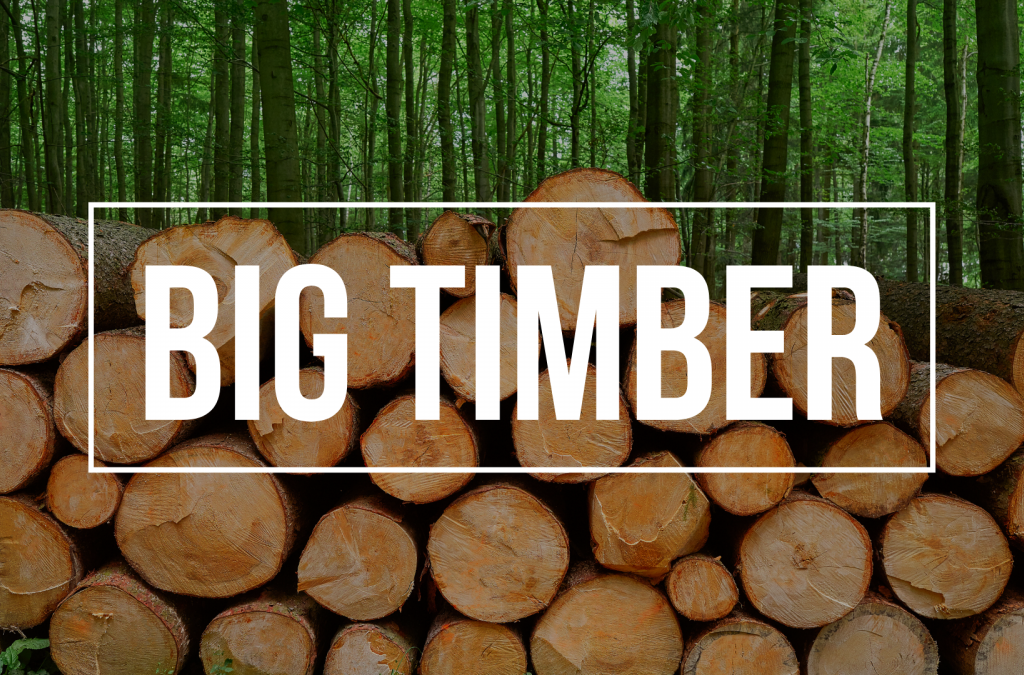 Talent On Tap – Kevin and Sarah Bring You Big Timber