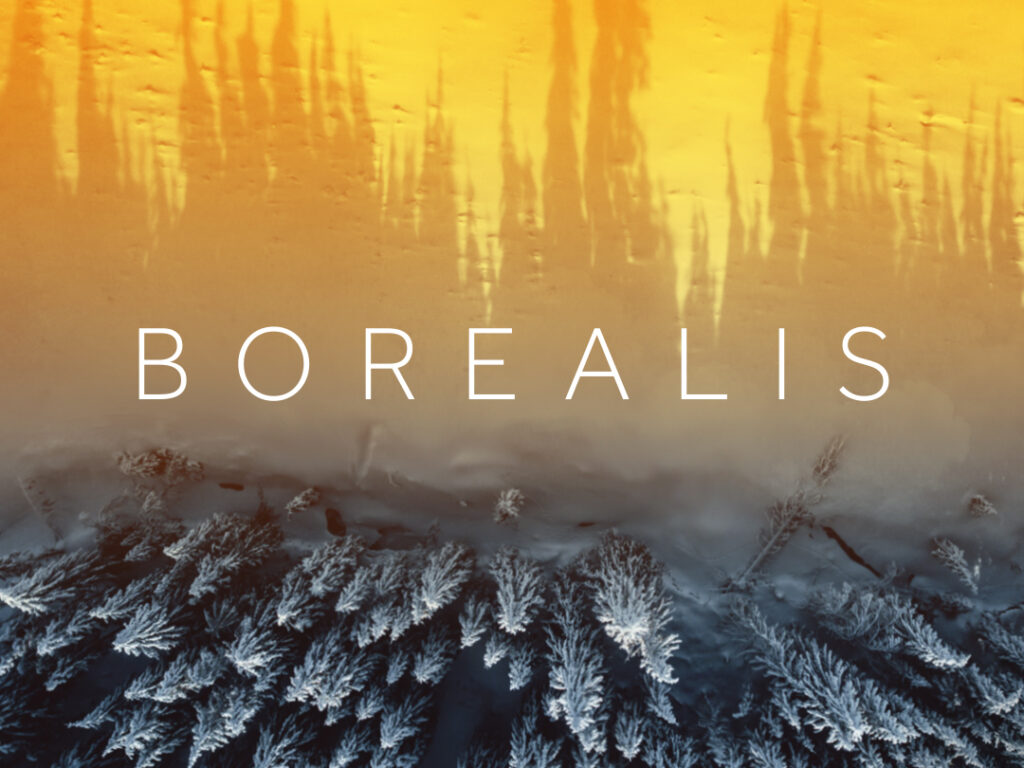 Talent On Tap – Kevin McMahon Translates Borealis
