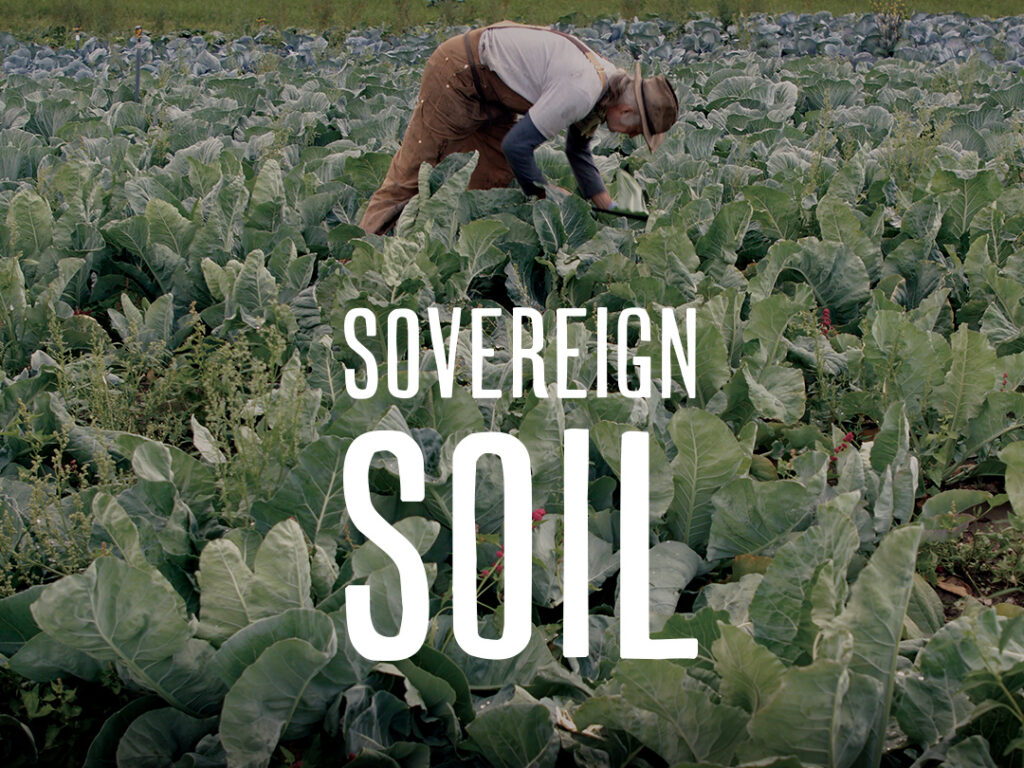 Talent on Tap – David Curtis Pays Homage to the Growers in Sovereign Soil